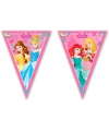 Disney prinses vlaggenlijn 2 3 m