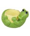 Eierdop krokodil 6 cm