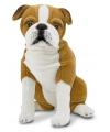 Engelse bulldog honden knuffel 53 cm