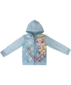Frozen hooded sweatshirt