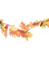 Gekleurde herfstslinger 175 cm