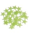 Glow in the dark sterren 102 stuks
