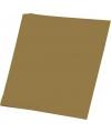 Gouden karton vel 48 x 68 cm
