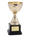 Gouden trofee beker