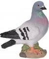 Grijze duif stenen beeld 24 cm
