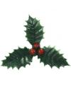 Groene kersttakjes op steker
