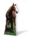Groot decoratiebord paard 190 cm