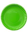 Grote kartonnen bordjes groen 29 cm