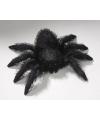 Halloween pluche spin knuffel 14 x 24 cm