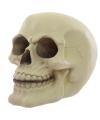 Halloween schedel spaarpot glow in the dark