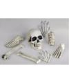 Halloween zak met 8 botten van skelet