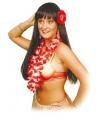 Hawaii accessoire set rood