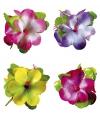Hawaii haarclip met grote bloem