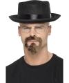 Heisenberg verkleedset