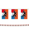 Holland vlaggenlijn met leeuw 10 meter