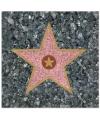 Hollywood walk of fame servetten 33 x 33 cm