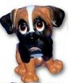 Honden beeldje boxer puppie 13 cm