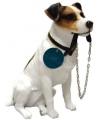 Honden beeldje jack russel hond met riem 15 cm