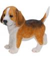 Honden beeldje staande beagle puppy 29 cm