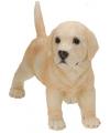 Honden beeldje staande labrador puppy 29 cm