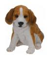 Honden beeldje zittende beagle puppy 23 cm