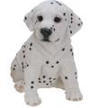 Honden beeldje zittende dalmatier puppy 23 cm