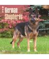 Honden kalender 2016 duitse herder