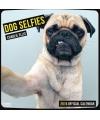 Honden kalender 2016 selfies