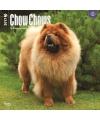 Honden kalender 2017 chow chow