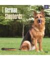 Honden kalender 2017 duitse herder