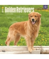 Honden kalender 2017 golden retriever