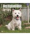Honden kalender 2017 west highland terrier