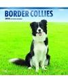 Honden kalender 2018 border collies