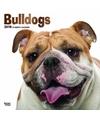 Honden kalender 2018 bulldogs