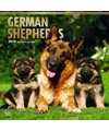 Honden kalender 2018 duitse herders