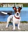Honden kalender 2018 jack russel