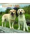 Honden kalender 2018 labrador retrievers geel