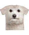Honden t shirt bichon frise