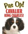 Honden waakbord pas op cavalier king charles 21 x 15 cm