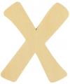 Houten letter x 6 cm