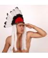 Indianen hoofdtooi wit