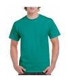 Jadegroen katoenen shirt voor volwassenen