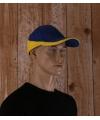 Kariban race pet blauw en geel