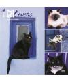 Katten kalender 2017 cat lovers