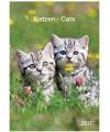 Katten kalender 2017