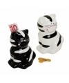 Katten spaarpot zwart