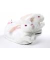 Kinder dieren sloffen konijn wit