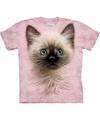 Kinder t shirt kat poes kitten met blauwe ogen
