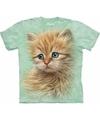 Kinder t shirt rode kat poes kitten met blauwe ogen