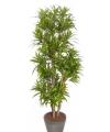 Kunst plant dracena 120 cm